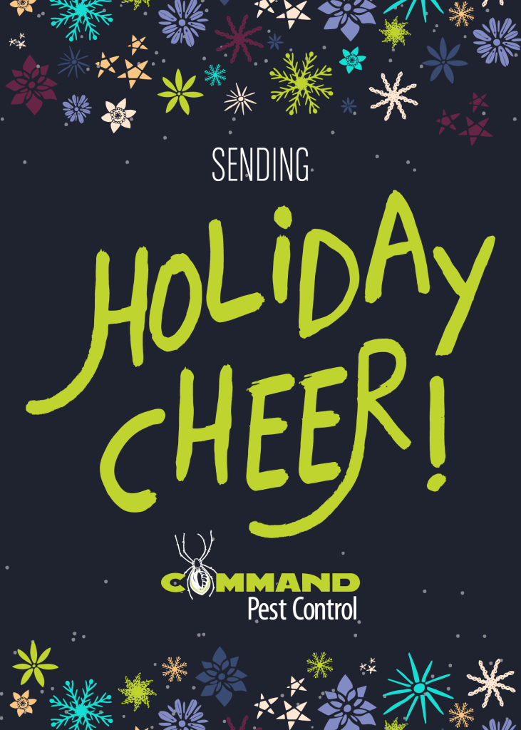 Command 2015 Holiday