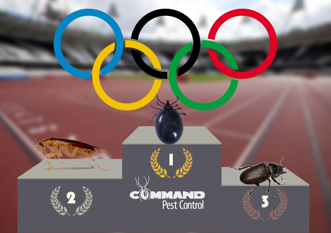 2016 olympic pest athletes little rock arkansas