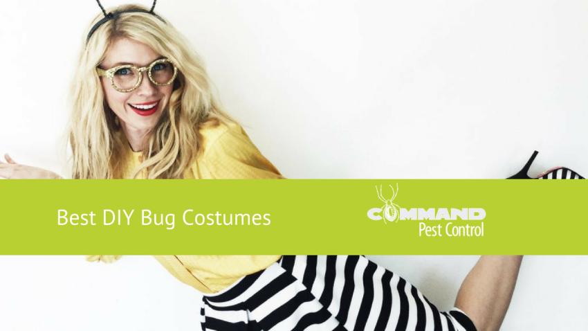 Bug Costume