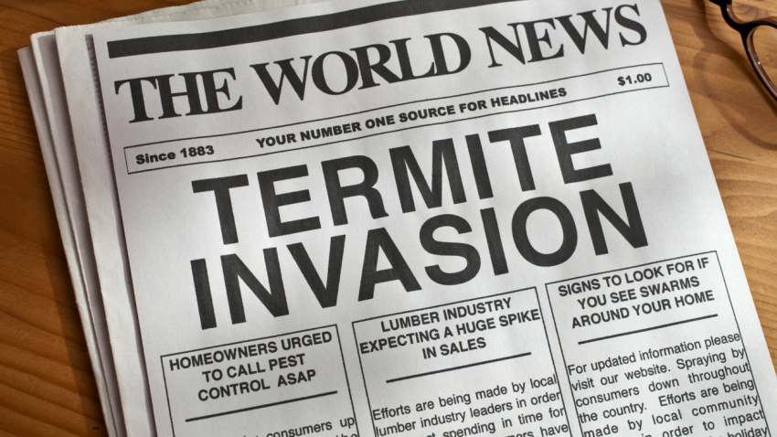 4 Signs Termites are Taking Over Your Home